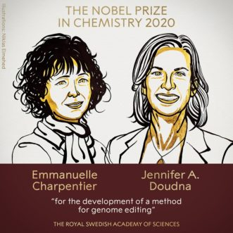 【2020諾貝爾化學獎】基因剪刀:一個改寫生命密碼的工具