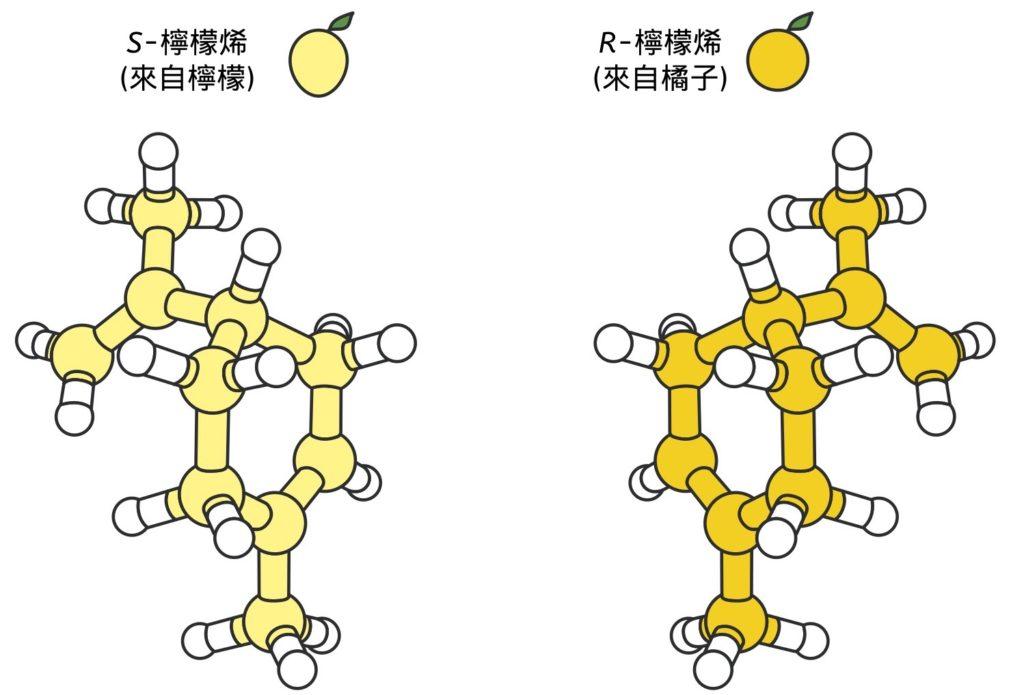 許多分子有兩種異構物存在,其中一種是另一種的鏡像。它們經常對身體產生完全不同的影響。例如,一種版本的檸檬烯分子具有檸檬香味,而其鏡像則聞起來像橘子。